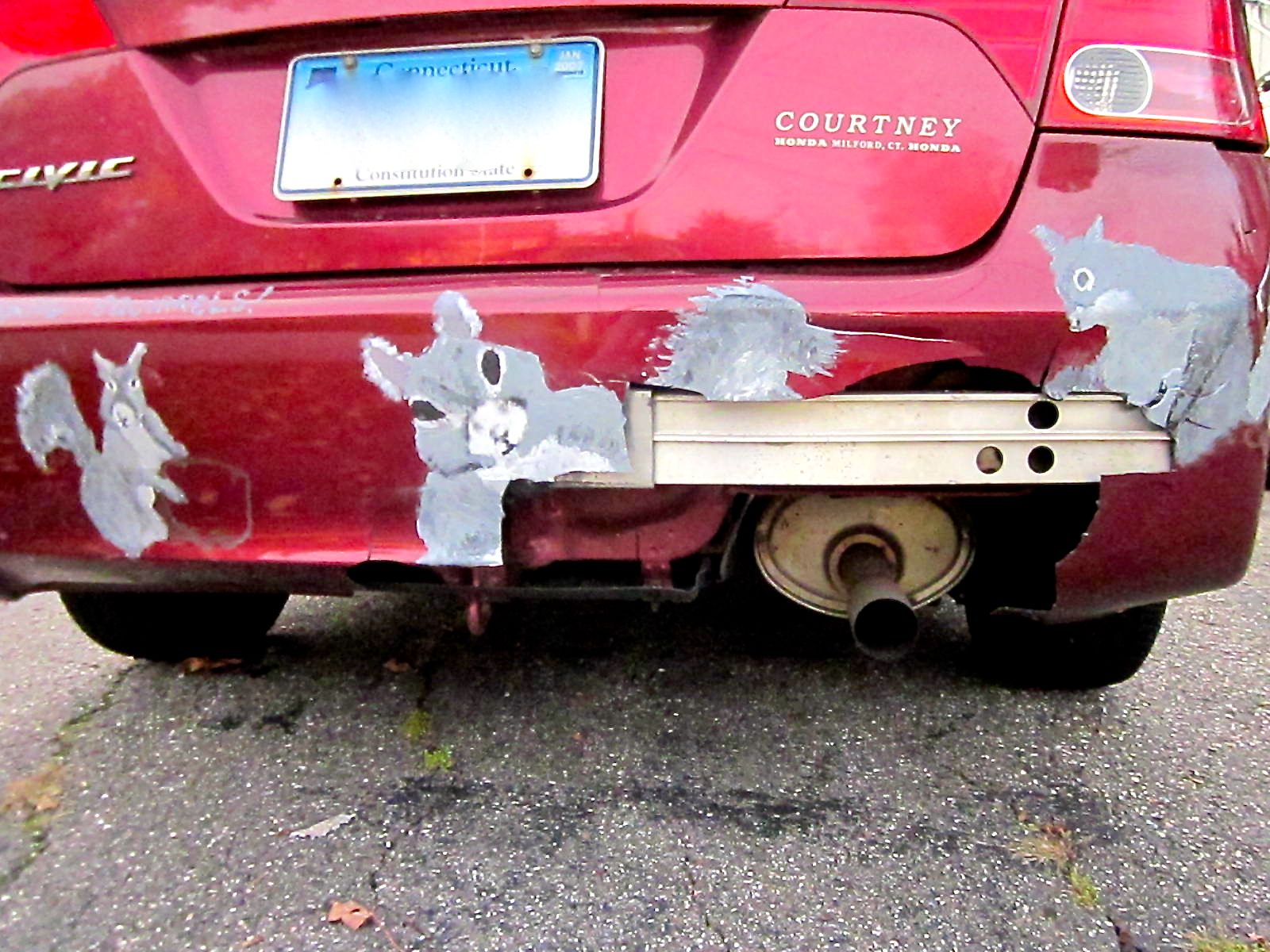 Squirrel bumper
